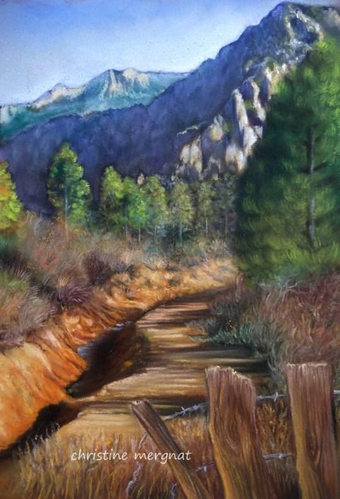 """""""le petit chemin"""" d'après une photo de M.N.Archambaud - NON DISPO"""