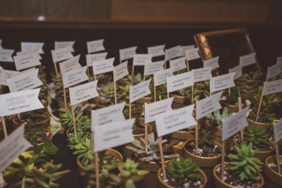 succulent escort cards with name flags