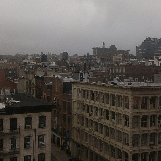 foggy tribeca
