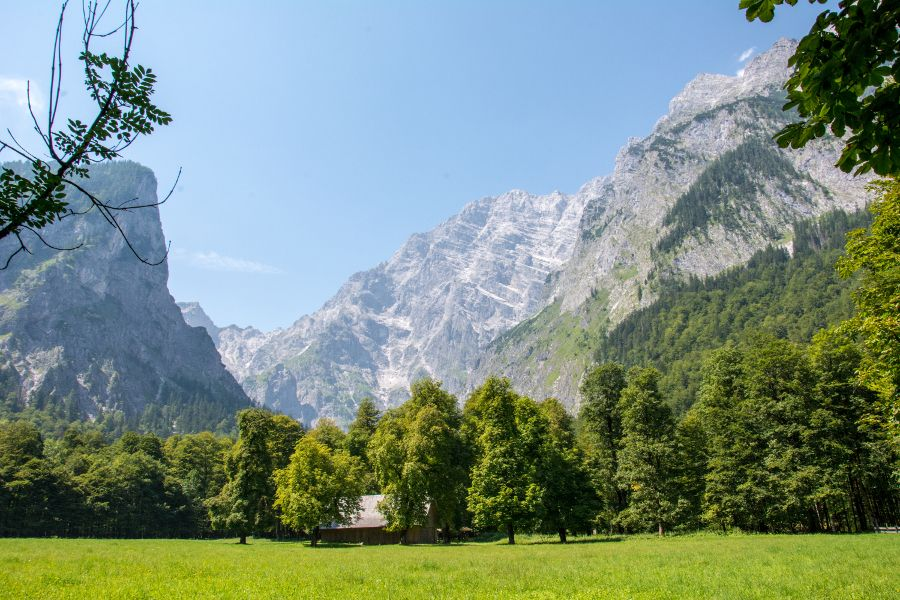 A meadow in front of Watzmann mountain in Berchtesgaden National Park.