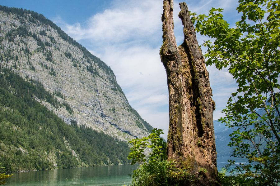 A view along the Königssee.