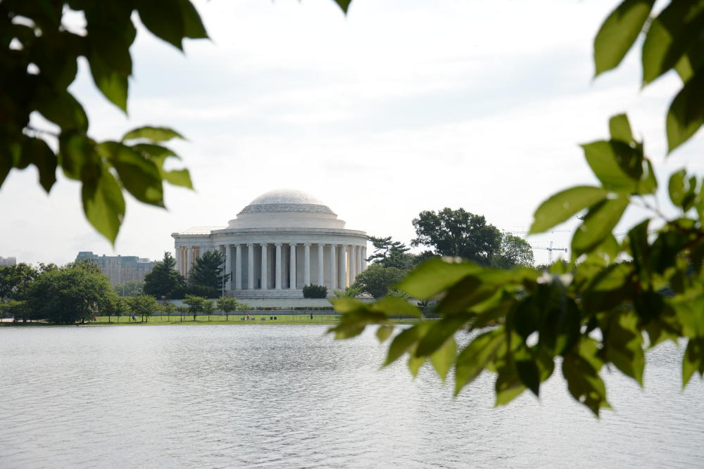 Don't miss the Jefferson Memorial through the cherry trees. More on how to spend your day in Washington, D.C. on Reverberations.