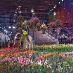 Going Dutch: Philadelphia Flower Show 2017