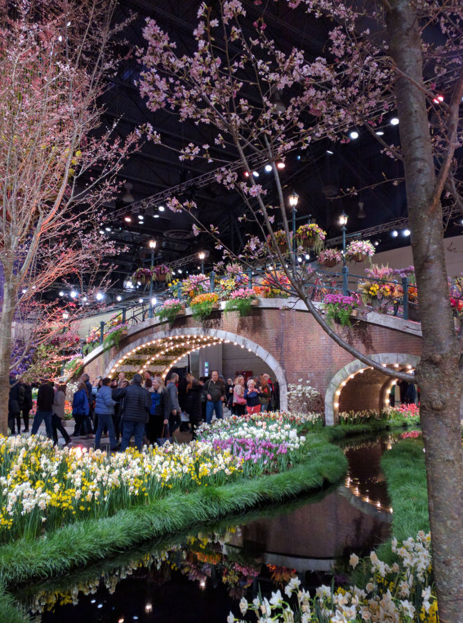 The opening show piece at the Philadelphia Flower Show 2017 is quite a stunner!