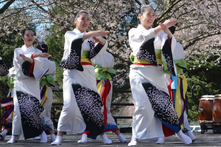 Tamagawa University dancers take to the stage in Philadelphia. Every year, people gather in Philadelphia's Shofuso in Fairmount Park for Sakura Sunday to celebrate Japanese culture and picnic under the cherry blossoms!