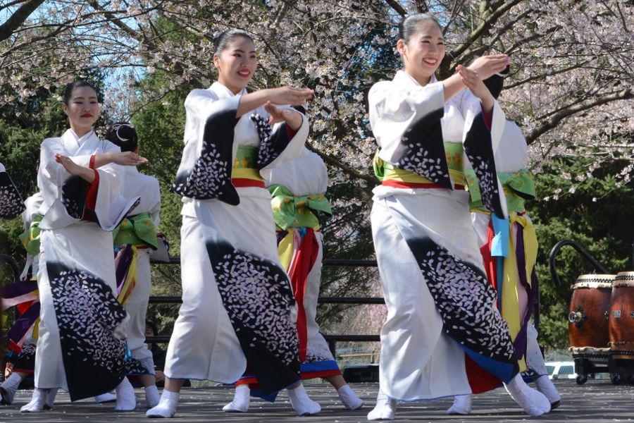 Tamagawa University dancers entertain the crowds at Philadelphia Sakura Sunday.