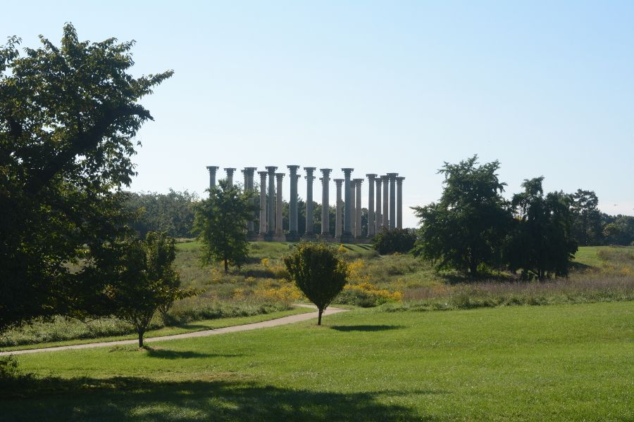 Capitol Columns at the National Arboretum.