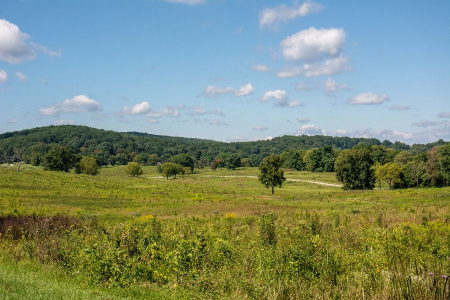 Meadows at Valley Forge National Historical Park in Pennsylvania.