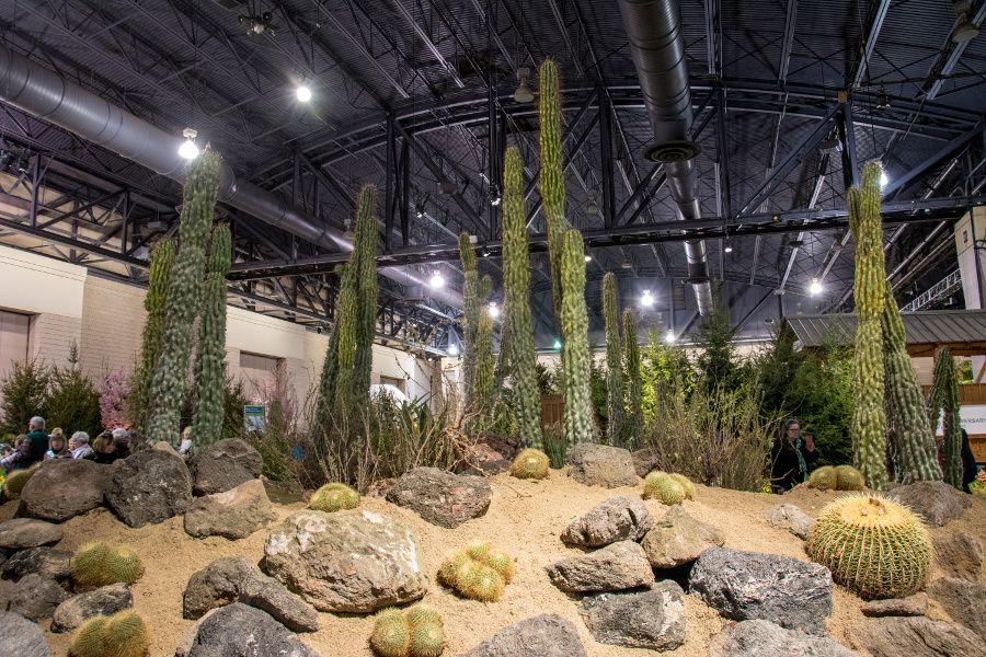 Desert landscape at the Philadelphia Flower Show 2018.