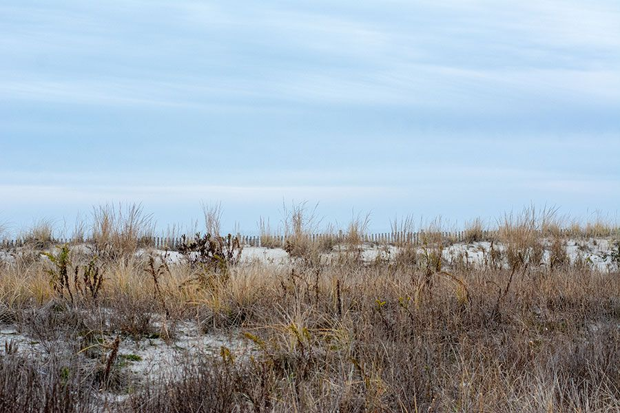 The beach dunes are the best spot to enjoy during Cape May in the winter.