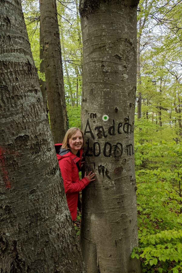 A tree marks 1000m to Andechs.