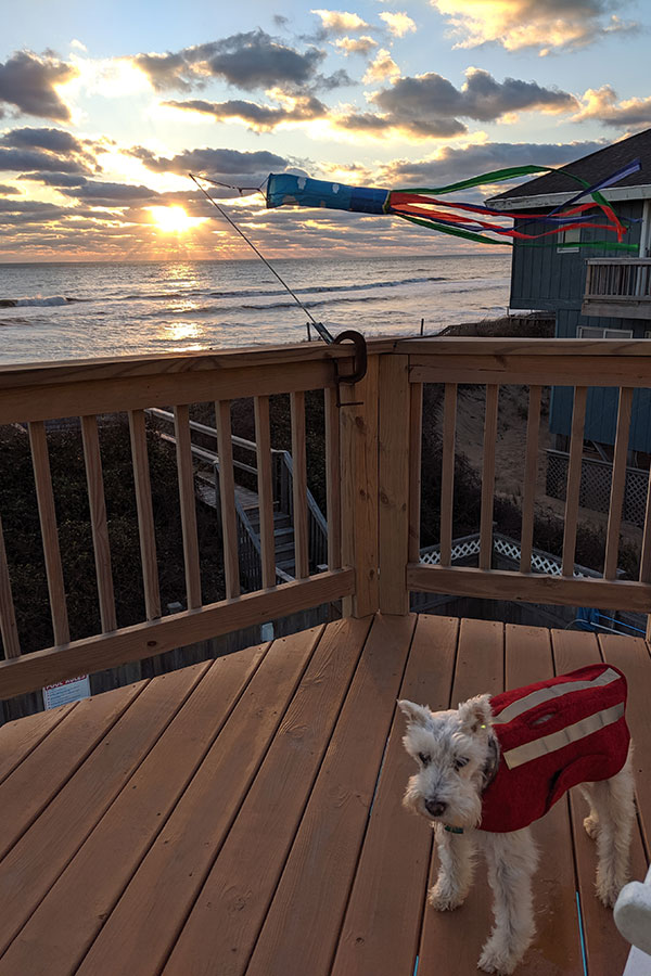 An oceanfront Outer Banks pet-friendly rental.