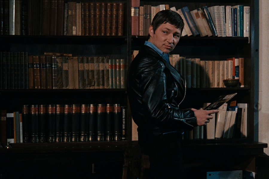 Learn German with the film Fox and his Friends from filmmaker Rainer Werner Fassbinder.