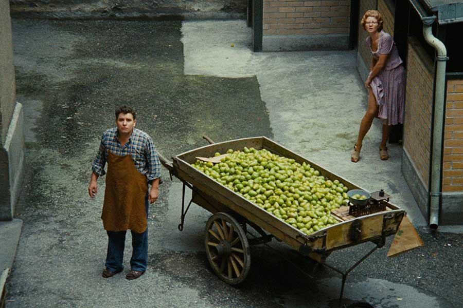 Learn German with the film Merchant of Four Seasons from filmmaker Rainer Werner Fassbinder.