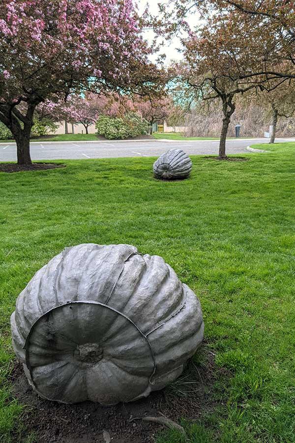 """John Ruppert's """"Pumpkins"""" on display at Grounds for Sculpture."""