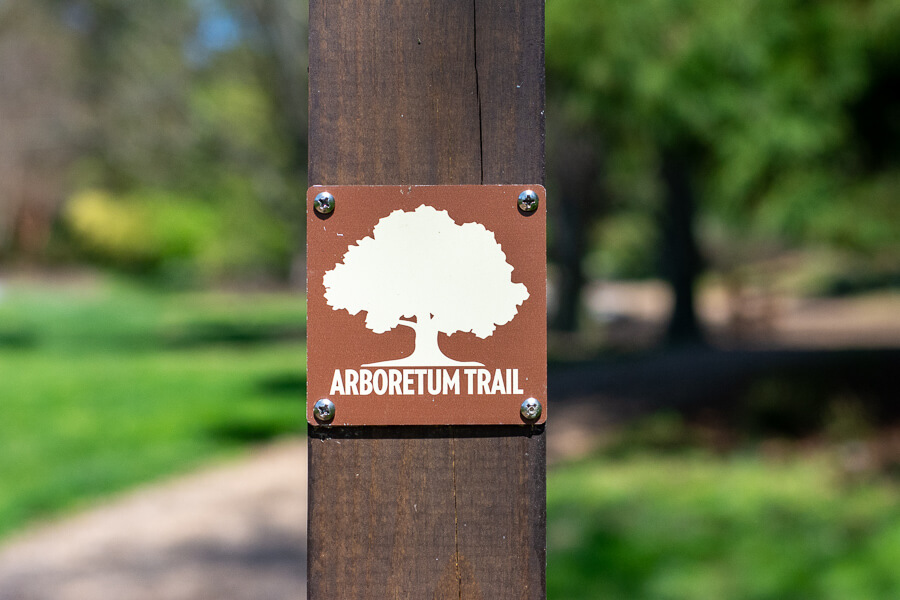 The Arboretum Trail offers a path lined with trees.