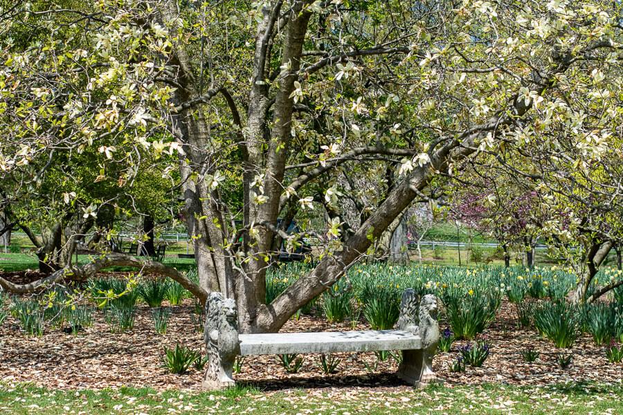 A quiet bench at Hershey Gardens, a Pennsylvania botanical garden.