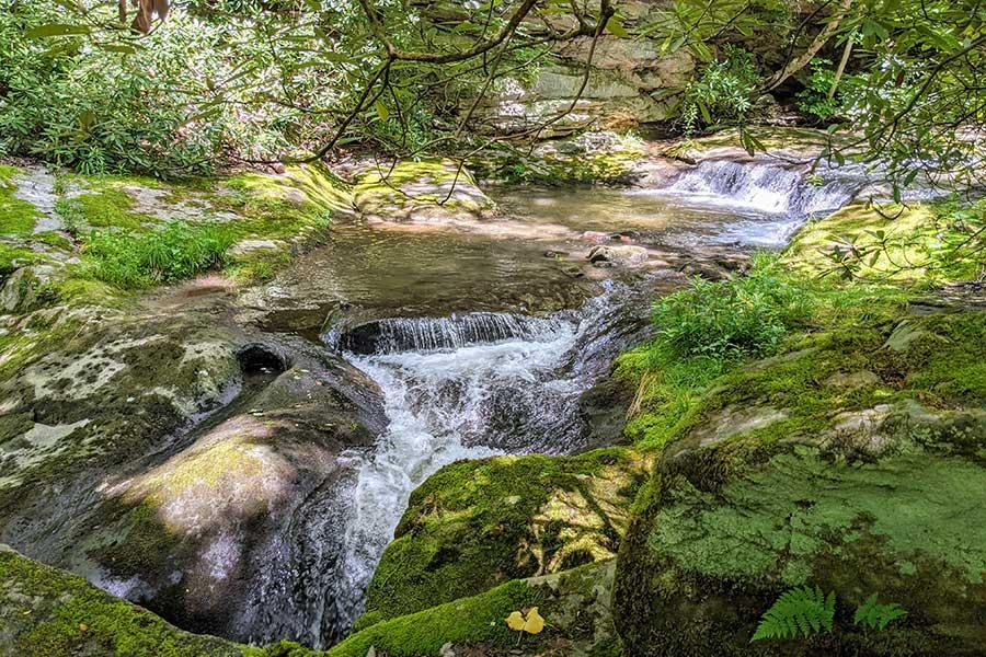 A waterfall along Bear Run near the picnic area at Fallingwater.