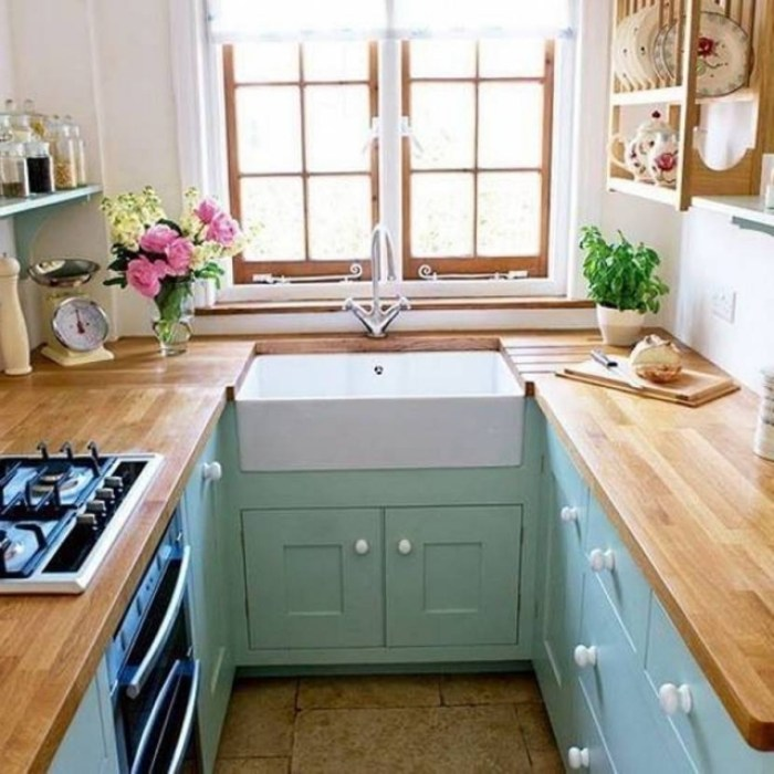 Tiny U-Shaped Kitchen
