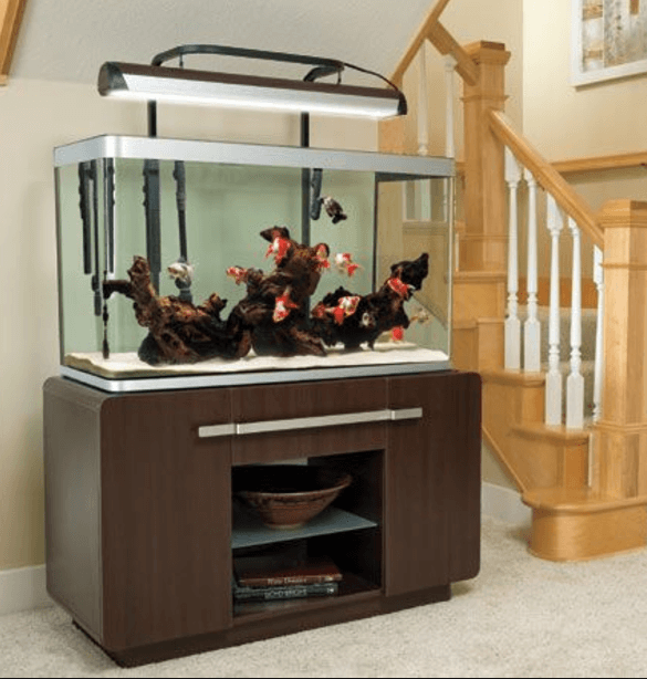 Fishtank furniture Dog House Fish Tank And Stand Reverbsfcom 20 Most Attractive Collection Of Aquarium Furniture Designs new 2019