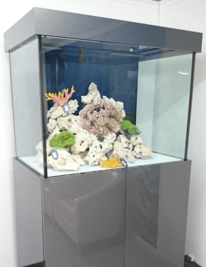 AquariumFurniture Stand Metal