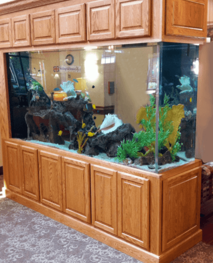 20 Most Attractive Collection of Aquarium Furniture Designs ...