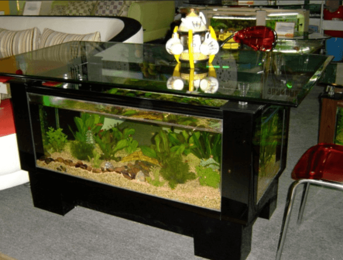 Tv Stand Designs In Bangalore : Most attractive collection of aquarium furniture