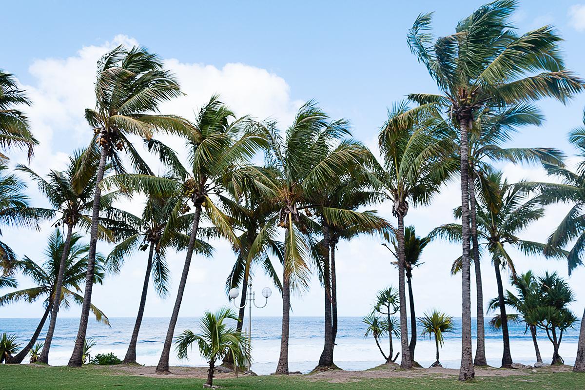 Plage de Grande Anse La Réunion