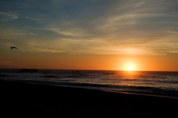 coucher du soleil cote ouest de nouvelle zélande