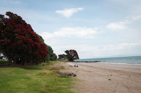 Coromandel en quittant Auckland / Nouvelle Zélande