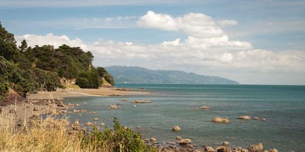 Coromandel Nouvelle-Zélande île du nord