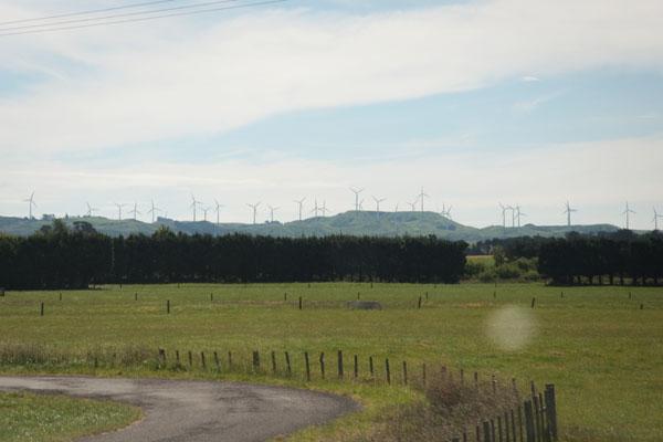 Paysage d'éolienne Nouvelle Zélande
