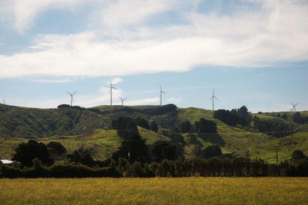 Paysage composé d'éoliennes Nouvelle Zélande