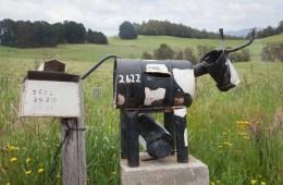 Boite aux lettres dans le village de Wilmot en Tasmanie