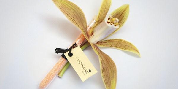 Petite attention du Spa : une fiole de sel de bain et une fleur d'orchidée