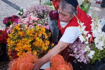 Le marché aux fleurs à Funchal Madère