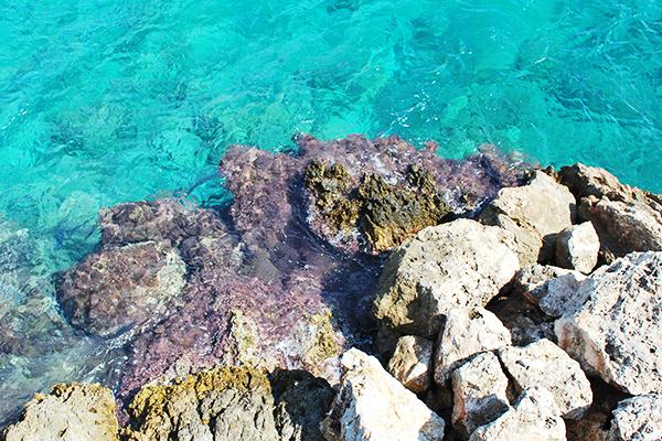 La mer de Crète en 2007 (en plein dans le thème)