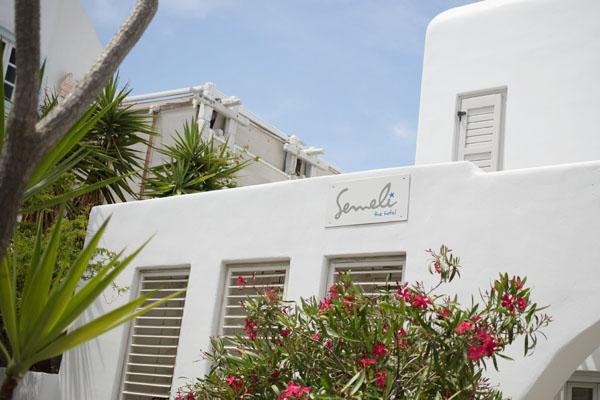 Semeli Hôtel Mykonos ville