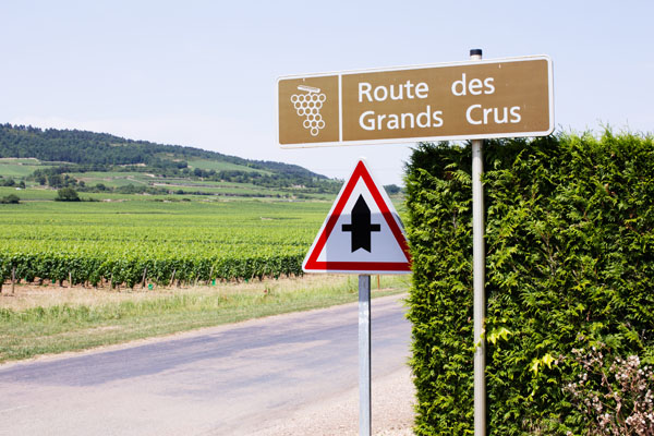 Route des Grands crus Bourgogne