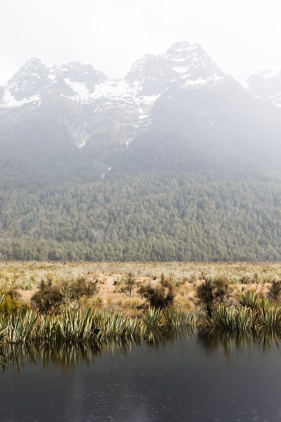 Mirror Lake Milford Sound