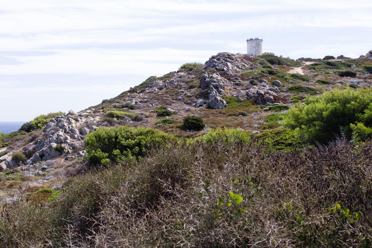 Tour de la Marine iles des Embiez