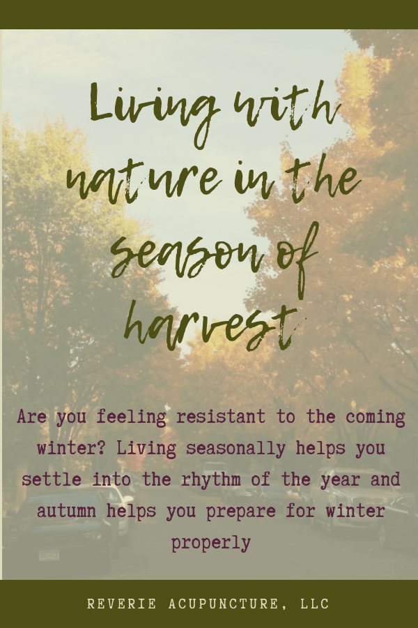 Are you feeling resistant to the coming winter? Living seasonally helps you settle into the rhythm of the year and autumn helps you prepare for winter properly
