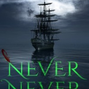 Cover Reveal: Never Never, by Brianna Shrum