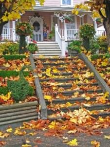 The Reverse Mortgage Appraisal Fort Collins Loveland Longmont Greeley Colorado