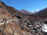 Au bout de la vallée... la croûpe du Tsergo Ri et le Gangchempo...