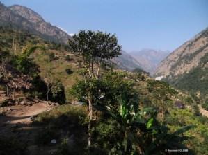 la buddhi Gandaki