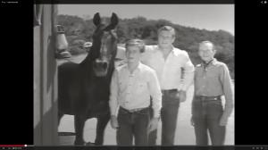 "Von links: ""Fury"", Joey, Jim und Pete (Screenshot aus http://www.youtube.com/watch?v=mDZ2uXULqy0)"