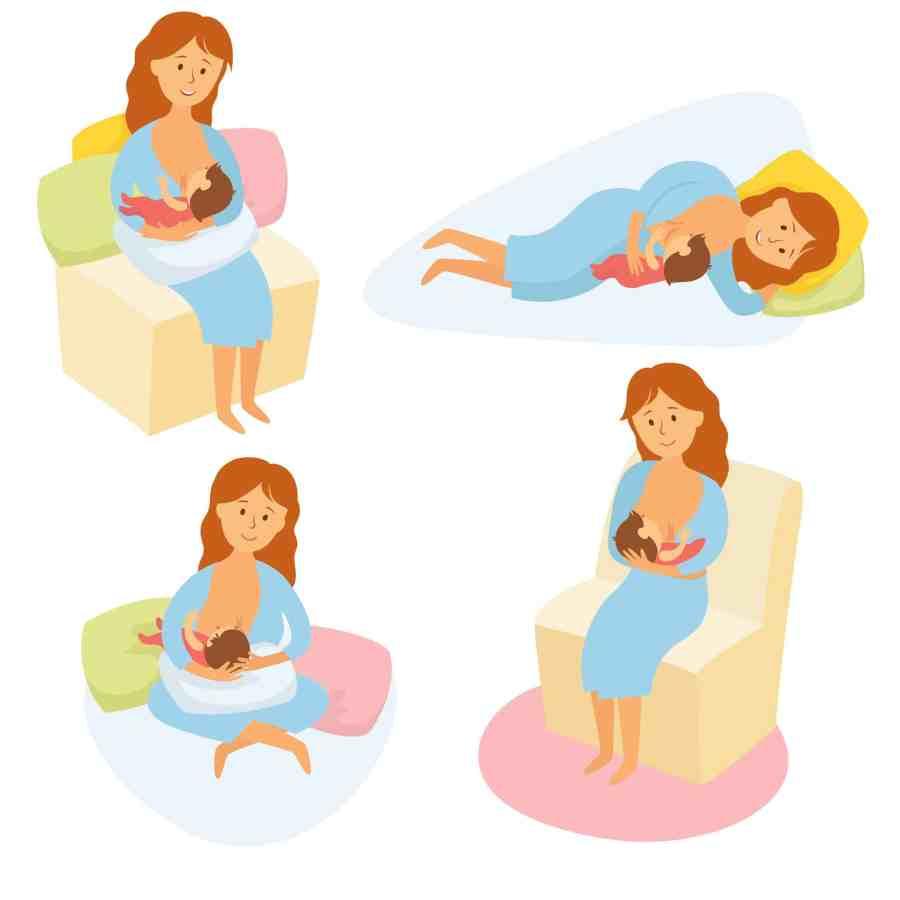 Arte das diferentes posições de amamentação.