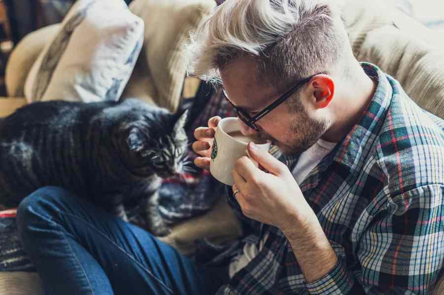 Na foto um homem de camisa xadrez tomando um café ao lado de um gato sentado em um sofá.