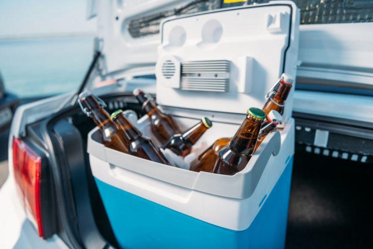 Un frigorifero portatile con bottiglie